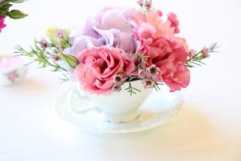 Kvety v šálke
