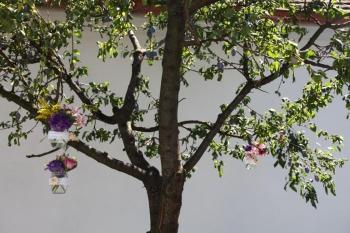 Kvietky na strome